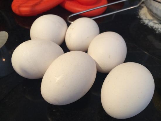 Seis ovos...