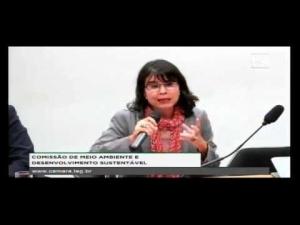 Alessandra Nilo - Implementação da Agenda 2030