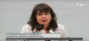 Alessandra Nilo - Seminário Agenda 2030 e ODS