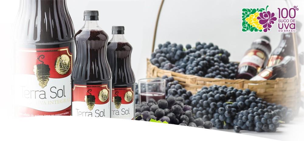 Sucos 100 % Suco de Uva