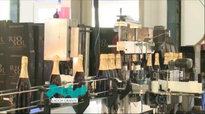 Produtores brasileiros de espumantes comemoram as vendas de fim de ano